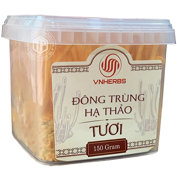 dong-trung-ha-thao-tuoi-viet-nam-nguyen-chat